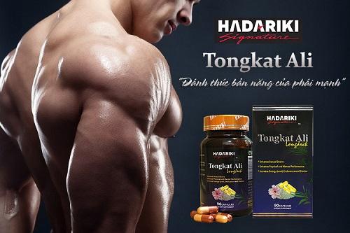 Hadariki Tongkat Ali 500mg chiết xuất từ cây mật nhân