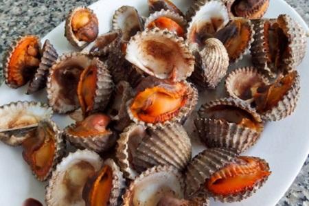 Sò huyết là một trong những loại hải sản thơm ngon và chứa nhiều dinh dưỡng